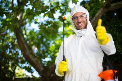 Pest Control in Swiss Cottage, NW3. Call Now 020 8166 9746