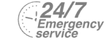 24/7 Emergency Service Pest Control in Swiss Cottage, NW3. Call Now! 020 8166 9746